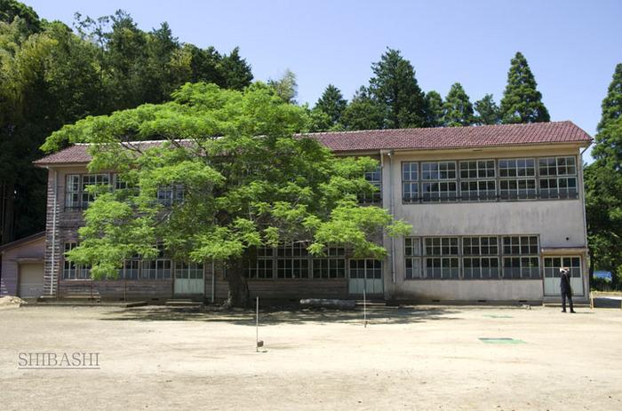 140614_校舎全景.jpg