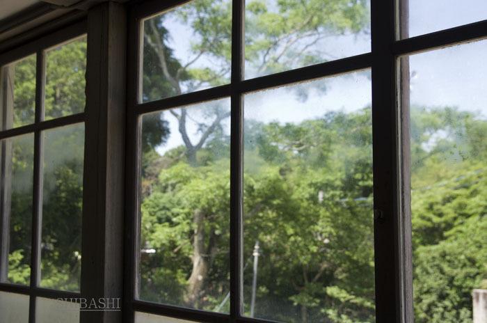 140614_窓からの緑.jpg