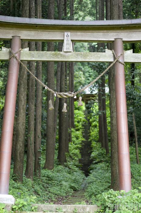 140706_神社.jpg