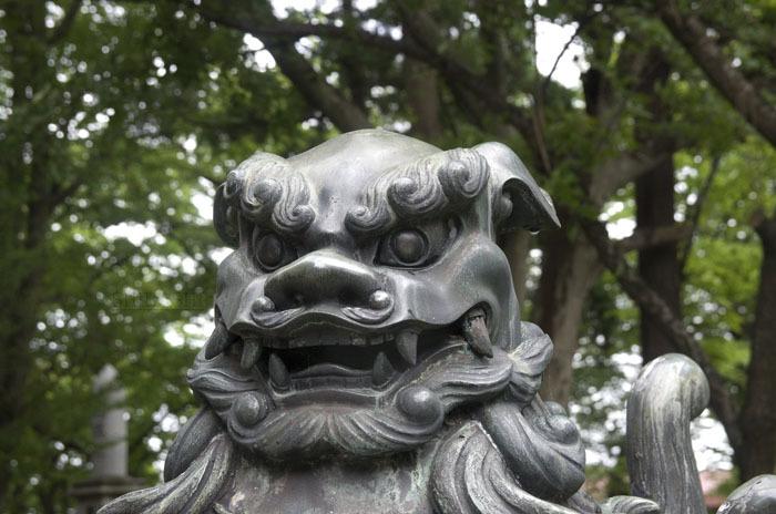 1407_狛犬4-2.jpg