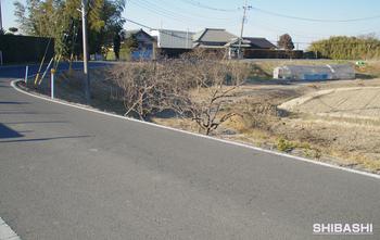 20140127_Winding road3.jpg