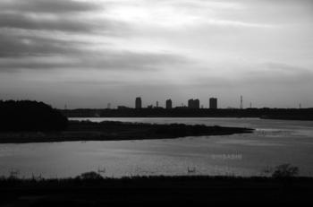201401_印旛沼一部俯瞰.jpg