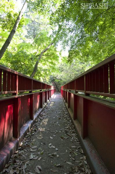 201404_山橋途中.jpg