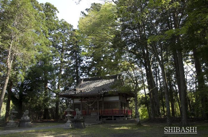 201404_山神社.jpg