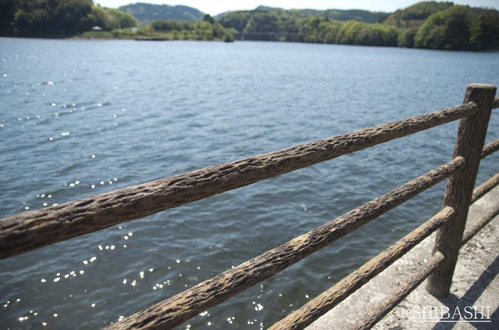 +湖畔.jpg