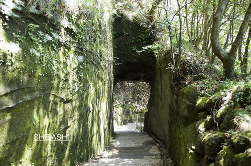 トンネルn-1.jpg