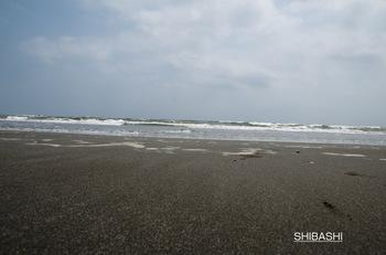 波だねぇ.jpg