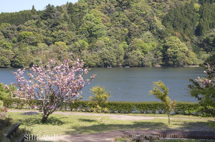 湖畔+.jpg