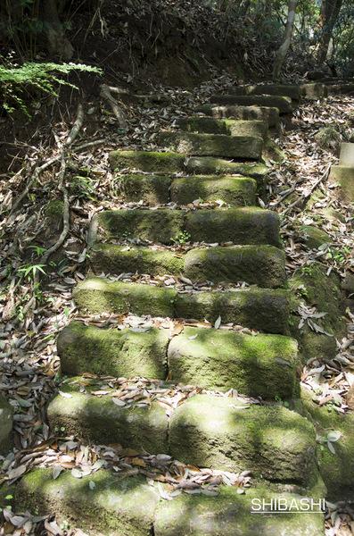 石段D.jpg