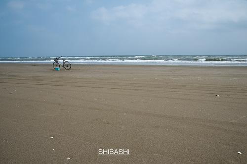 自転車に乗って.jpg