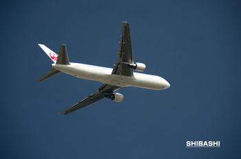 JAL2.jpg